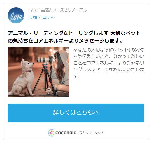 ココナラ・沙羅〜sara〜先生