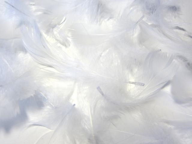 4大天使とその特徴とは